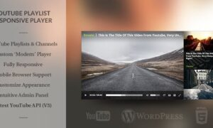Youtube Playlist Video Player