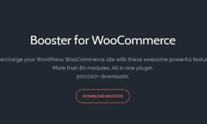 WooCommerce Booster Plus