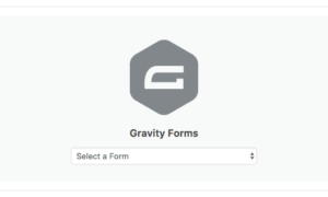 Gravity Forms Debug Add-On